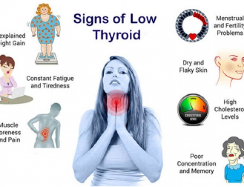 Low Thyroid, Weight Gain and Endocrinologist