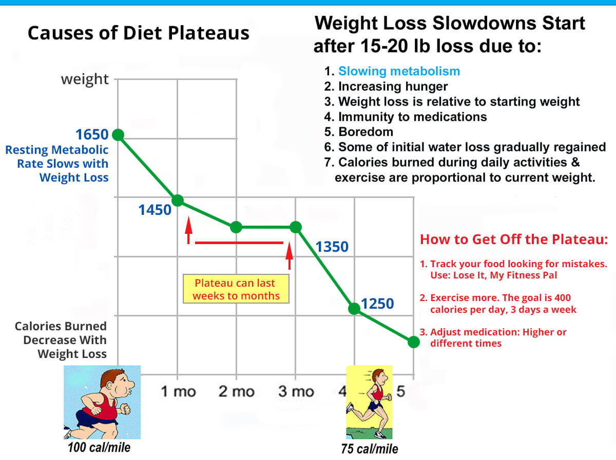 Weight Loss Plateaus Chart
