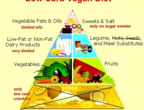LoCarb Diets for Vegans