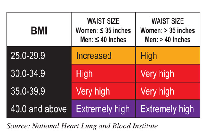 Waist Circumference Best Measure Of Overeating Or Obese