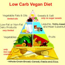 Low carb vegab diet