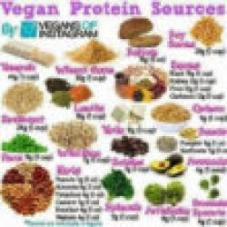 Protein sources for vegan diet